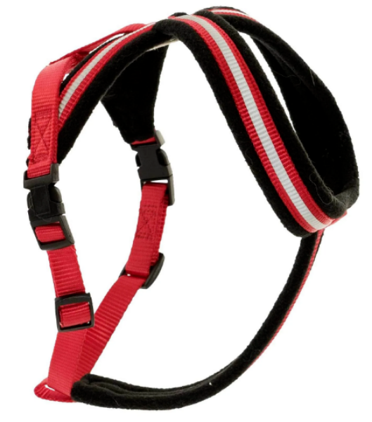 Picture of Company of Animals Comfy Harness Red XSmall
