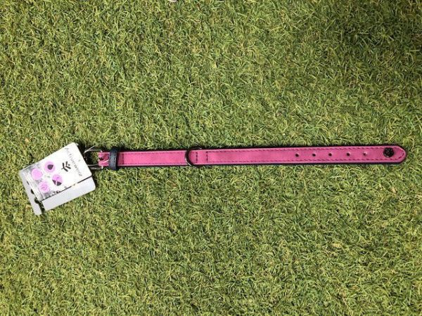Picture of James & Steel Brights Tech Collar Pink Medium