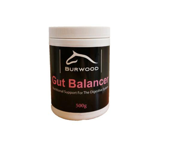 Picture of Burwood Gut Balancer 500g