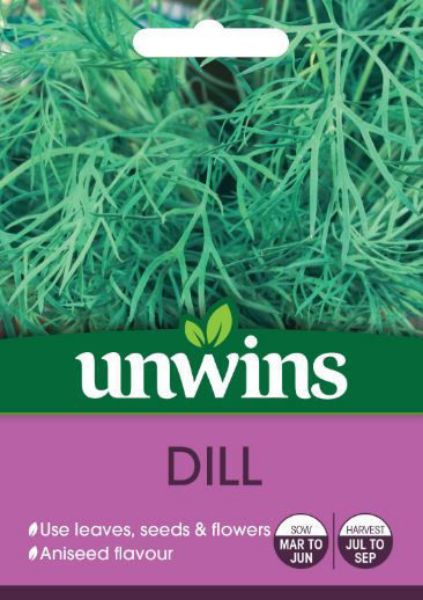 Picture of Unwins Herb Dill Seeds