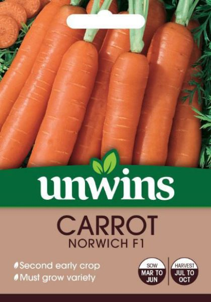 Picture of Unwins Carrot Norwich F1 Seeds