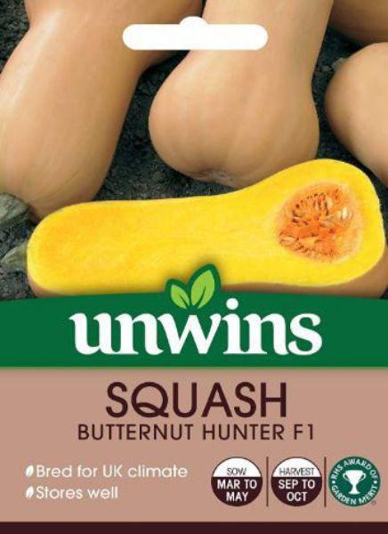 Picture of Unwins Squash (Butternut) Hunter F1 Seeds