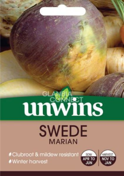 Picture of Unwins Swede Marian Seeds