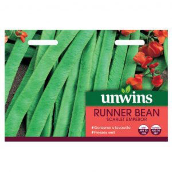 Picture of Unwins Runner Bean Scarlet Emperor Seeds