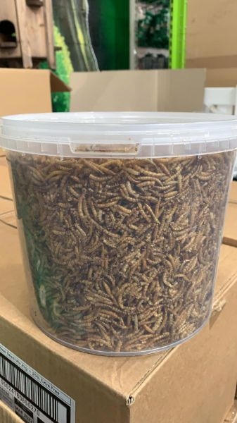 Picture of Rokers Wild Bird Food Tub - Mealworm 1kg