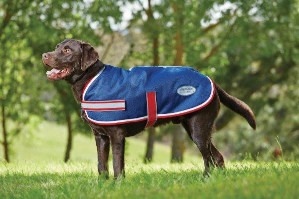 Picture of Weatherbeeta Parka 1200d Dog Coat Navy/Red/White