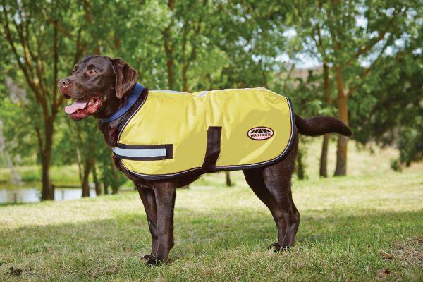 Picture of Weatherbeeta Comfitec Reflective Parka 300D Dog Coat Yellow
