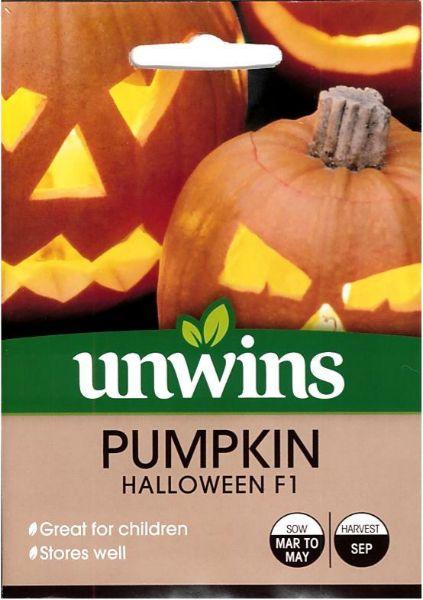 Picture of Unwins Pumpkin Halloween Seeds