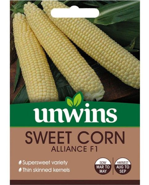 Picture of Unwins Sweet Corn Alliance F1 Seeds