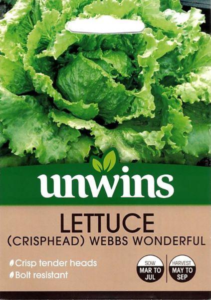 Picture of Unwins Lettuce (Crisphead) Webbs Wonderful Seeds