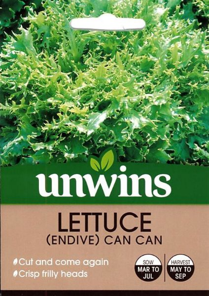 Picture of Unwins Lettuce Endive Can Can Seeds