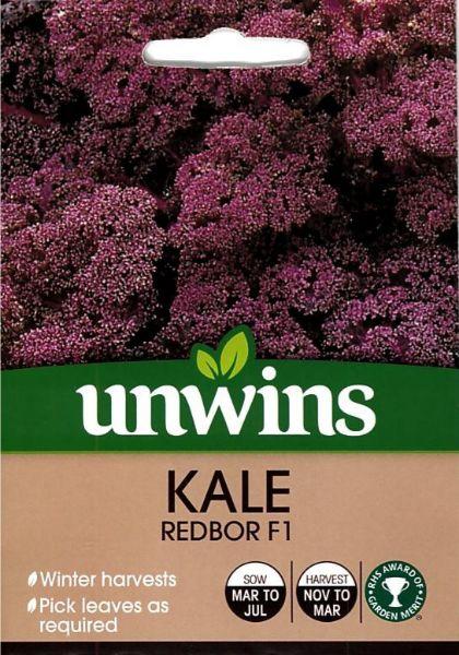 Picture of Unwins Kale Redbor F1 Seeds
