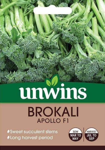 Picture of Unwins Brokali Apollo F1 Seeds
